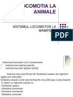 LOCOMOTIA LA ANIMALE.ppt