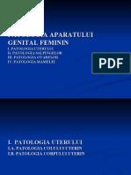LP genital feminin.ppt.ppt