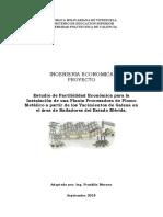Proyecto de ingenieria economica plomo metalico VERSION sept 2015