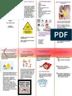 PLEGABLE -PREVENCION-TOXICO- ACTIVIDAD 2
