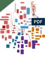 Miomatosis uterina _ Mapa Mental