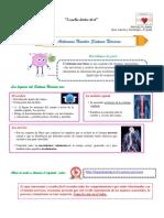 Activemos Nuestro Sistema Nervioso.pdf
