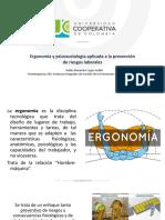 3. Ergonomía y psicosociología aplicada 2020.pdf