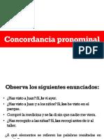 Concordancia pronominal.pdf