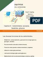 CH 9 - Hidratos de carbono.en.es
