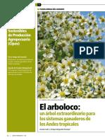 ARBOLOCO.pdf