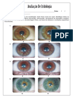 avaliao de iridologia