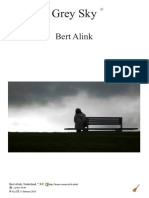 Grey Sky Bert Alink