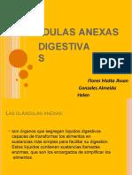 glandulasanexas2-160127160857-convertido