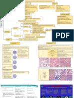 21. Patoligìa mamaria maligna
