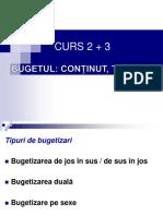 C3 Tipuri de bugetizari