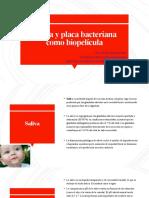 Unidad 2 Saliva y placa bacteriana como biopelícula