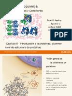Proteínas.en.es.pdf