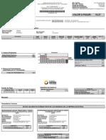 PLANILLA DELUZ.pdf