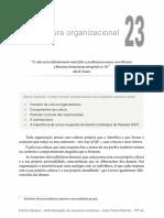 Cultura Organizacional. in Administração de RH - Jean Pierre Marras (2016)