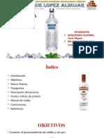 vodka informe