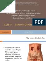 Aula 5 - Sistema Urinário e Reprodutor.pdf