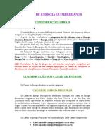 CANAIS  DE  ENERGIA  OU  MERIDIANOS.doc