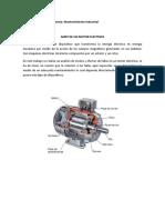 330558436-AMEF-Motor-Electrico.docx