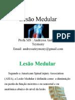 Lesão Medular