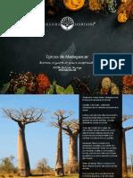Catalogue-TL-Epices-2017-light.pdf