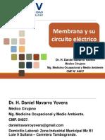 Semana 10. Membrana y su circuito eléctrico
