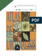 ATLAS DE UROANÁLISIS