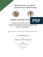 tesis 013 Ingeniería Agropecuaria - Caicedo Reinoso Cristhian - cd 013