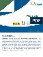 placa_mae.pdf