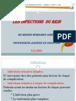 les infections du rein 2019.