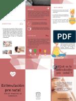 EstimulACIÓN PRENATAL (3)
