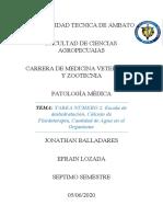 TAREA NÚMERO 2.docx