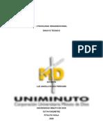 ENSAYO RECLUTAMIENTO Y SELECCIÓN DE PERSONAL 1