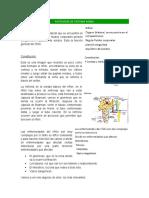 Patología de sistema renal