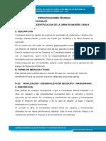 ESPECIFICACIONES TECNICAS BUGANVILLAS