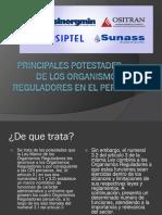 P. POTESTADES DE LOS ORGANISMOS REGULADORES,