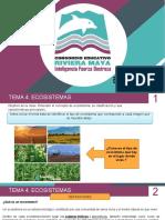 BIOLOGIA_tema4_Ecosistemas