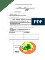evaluacion sobre celula 401