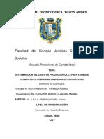 Determinación del costo de producción de la papa variedad ccompis en la comunidad campesina de occopata