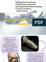 ortrosis, protesis