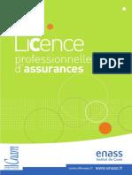plaquette_licence_professionnelle_assurances.pdf