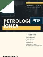petrologia ignea.pdf