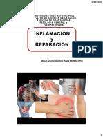 2  INFLAMACION Y REPARACION 20 PDF 2xh