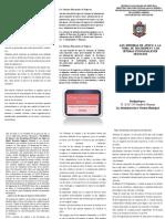 Triptico Ulmarys Los Sistemas de apoyo a la Toma De Decision y los sistemas Funcionales de negocio