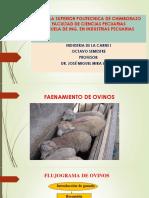 Faenamiento ovinos 4