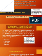 ESTR. Y COMPOSICION DE LA CARNE 6