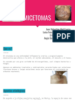 Seminario micoLab.pdf