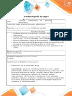 Formato perfil y descripcion de cargos