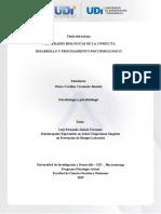 Plantilla de Trabajo Actividad Individual Fase 1 Psicobiologia.