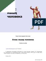 Atlas_myshts_cheloveka_Vasilyev_P_A.pdf